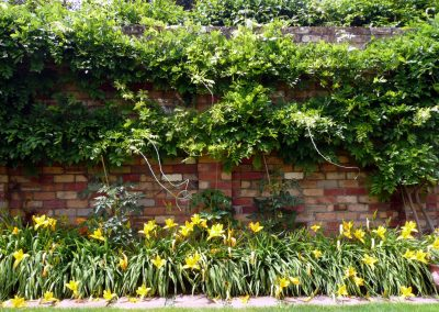 Epsom Entrance Garden