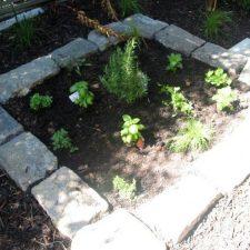 HG.+Herb+Garden+(1)