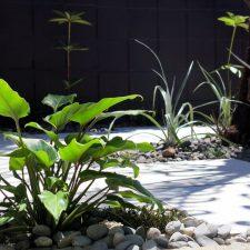 Meadowbank-Courtyard-4