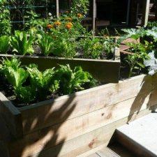 VG.+Vegetable+&+Herb+Garden+(12)