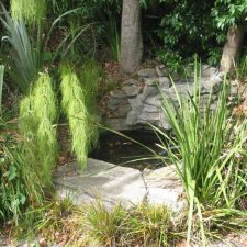 WF.+Water+Feature+-pond+(8)