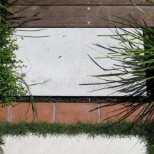 epsom-garden(5)