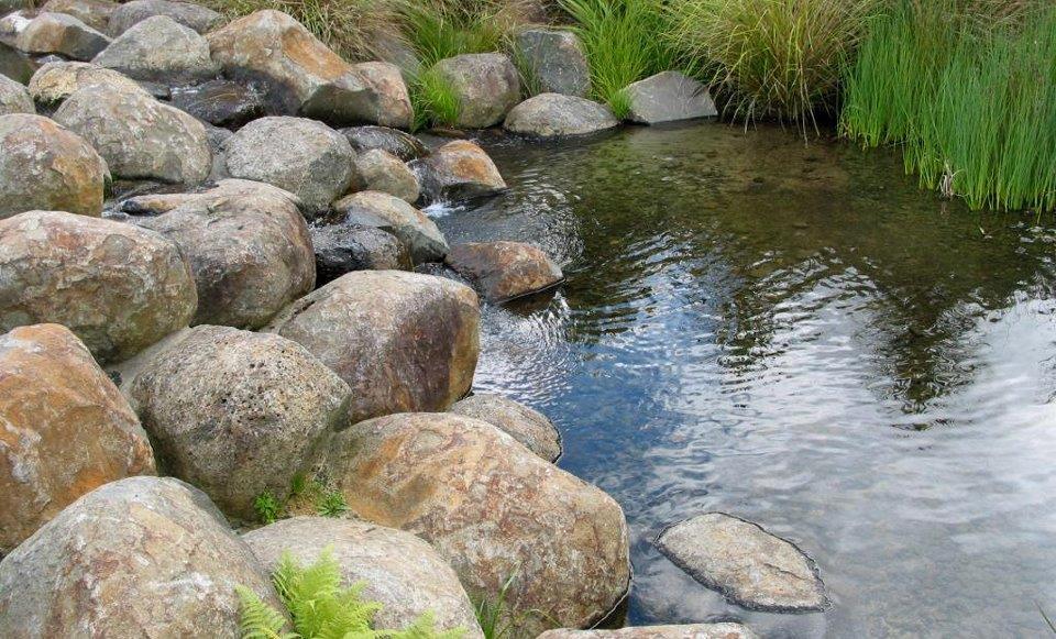 Pond Reserve
