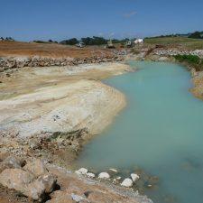native-planting-wetland-pond-(3)