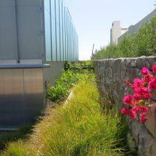 omaha-landscape-design-(4)